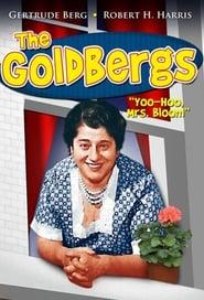 Seriencover von The Goldbergs