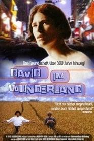 David im Wunderland 1998