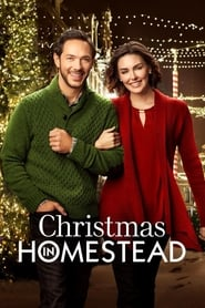 Christmas in Homestead (2016)