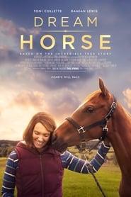 Regardez Dream Horse Online HD Française (2020)