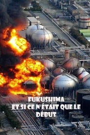 Fukushima: Is Nuclear Power Safe? (2011)