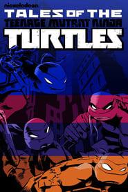 Teenage Mutant Ninja Turtles Season 5 Episode 9