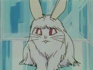 Sailor Moon 1x5