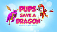 Pups Save a Dragon