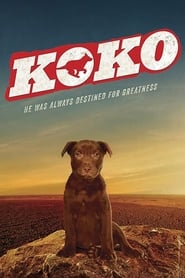 Poster Koko: A Red Dog Story 2019