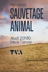Sauvetage animal 2021