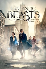 Image Fantastic Beasts and Where to Find Them – Animale fantastice şi unde le poţi găsi (2016)