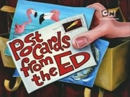 Ed, Edd y Eddy 4x24