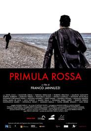 Primula Rossa (2019)