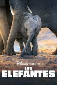 Los Elefantes (2020)