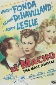 El macho 1942
