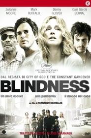 Blindness – Cecità