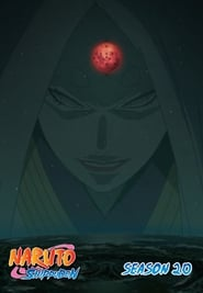 Naruto Shippūden - Season 20 Episode 422 : The Ones Who Will Inherit