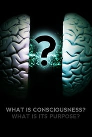 What Is Consciousness? What Is Its Purpose? streaming
