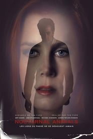 Regarder Nocturnal Animals sur Film Streaming