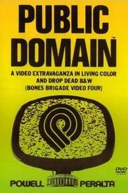 Powell Peralta: Public Domain 1988