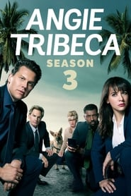Angie Tribeca streaming vf poster