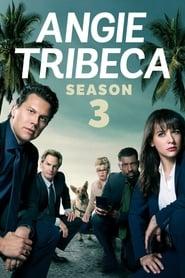 Angie Tribeca: 3ª Temporada