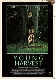 Young Harvest 2013
