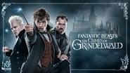 EUROPESE OMROEP   Fantastic Beasts: The Crimes of Grindelwald