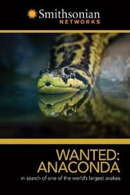 Wanted Anaconda