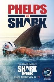 Phelps vs Tiburón
