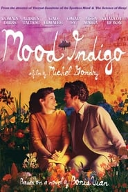 Poster Mood Indigo 2013