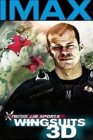 Wingsuit Warrior (2013)