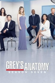 Grey's Anatomy: Temporada 7