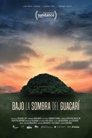 Bajo la Sombra del Guacarí (2019) CDA Online Cały Film Zalukaj