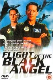 Poster Flight of Black Angel 1991