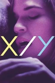 X/Y [2014]