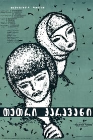 თეთრი ქარავანი 1964
