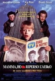 film simili a Mamma, ho riperso l'aereo - Mi sono smarrito a New York