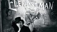 Elephant Man images