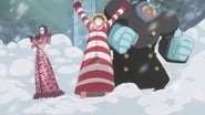 One Piece Dress Rosa Arc Episode 659 : A Horrible Past! The Secret of Dressrosa!