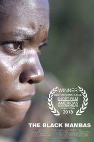 The Black Mambas (2018) CDA Online Cały Film Zalukaj