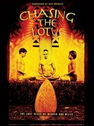 Chasing the Lotus