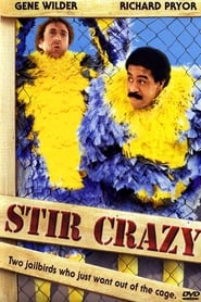 Poster for Stir Crazy