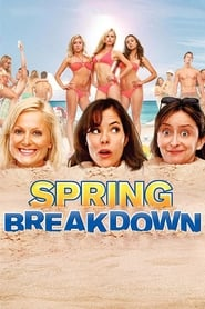 Watch Spring Breakdown (2009) Fmovies