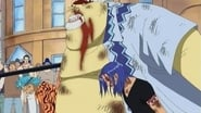 One Piece Sabaody Archipelago Arc Episode 405 : Eliminated Friends – The Final Day of the Straw Hat Crew