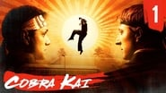 Cobra Kai Season 1 Episode 1 : Ace Degenerate
