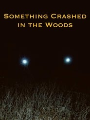 Something Crashed in the Woods (2019)