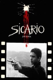Sicario Netflix HD 1080p