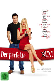 Der perfekte Ex [2011]