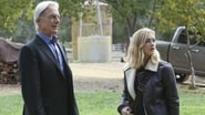 NCIS Season 13 Episode 10 : Blood Brothers