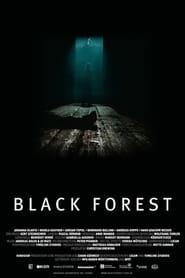 Czarny las / Black Forest (2012)