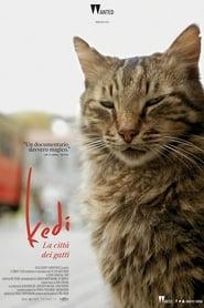 Kedi – La città dei gatti