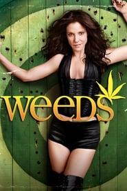 Poster Weeds 2012