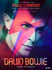 David Bowie: The Rise And Fall of Ziggy Stardust and the Spiders From Mars 2006